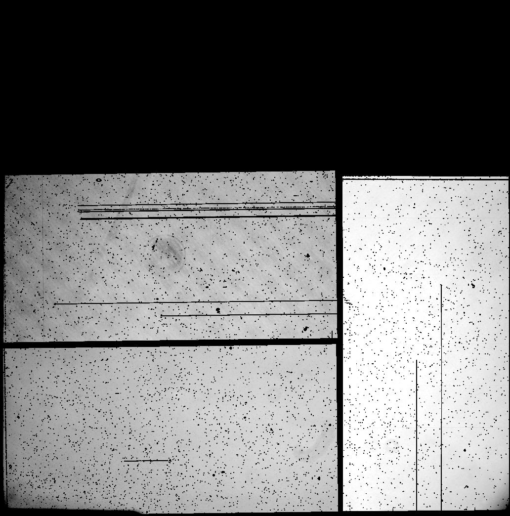 10311 X 10432 pixel WeightFrame