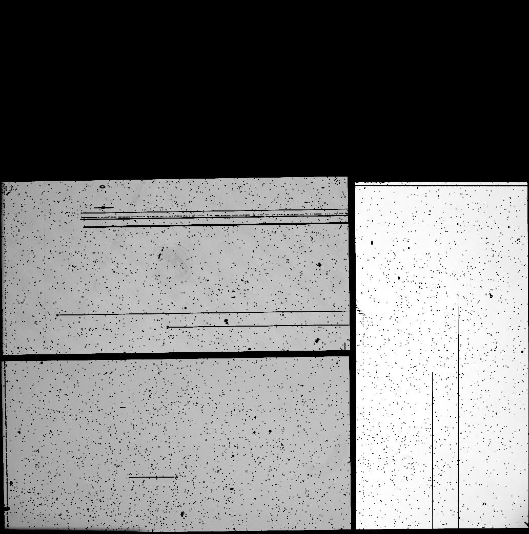 10316 X 10430 pixel WeightFrame