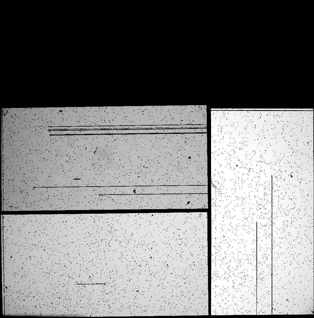 10308 X 10426 pixel WeightFrame